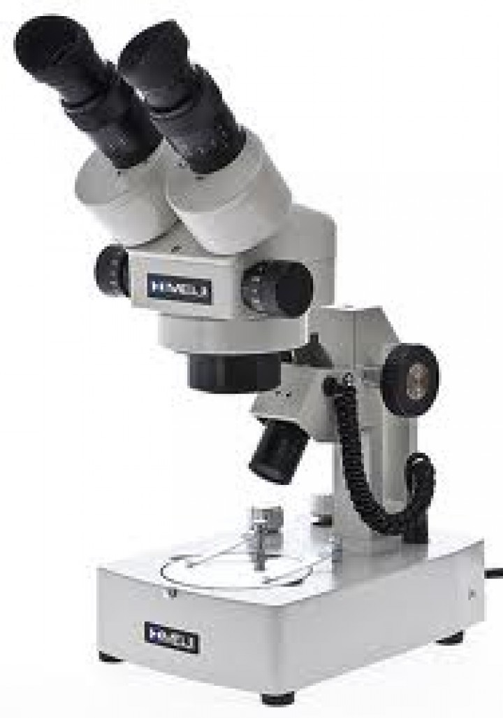 ZoomStereoMicroscope